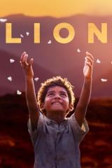 Lion kijken bij FilmGemist